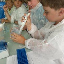 Wir untersuchen alles ganz genau...mit Pipette und Mikroskop...