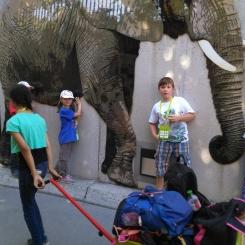 Schönbrunn...wir wollen ALLE Tiere sehen und lieben das Leiterwagerl :-)